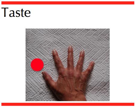 taste hand